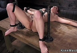 Brunette pussy vibed in equipment bondage